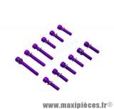 Déstockage ! Kit vis carter btr violet pour mbk/yamaha booster bw's (x12)
