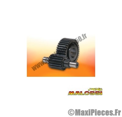 transmission malossi engrenages secondaires (dents 14/43) arbre de 17mm montage forcé pour maxi scooter 180 : gilera runner italjet dragster piaggio hexagon ...
