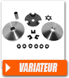 Variateur Maxi Scooter.