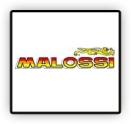Joint Moteur Malossi Scooter