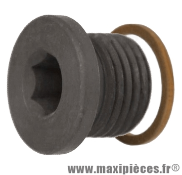Déstockage ! Bouchon pour cylindre fonte euro3 top perf  derbi senda drd…