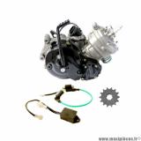 Déstockage ! Moteur Piaggio 50cc 2T H2O 11cv conqueror automatique pour karting, moto, dirt, minicross Conti RX 650 pro, minibike, quad, prototype...