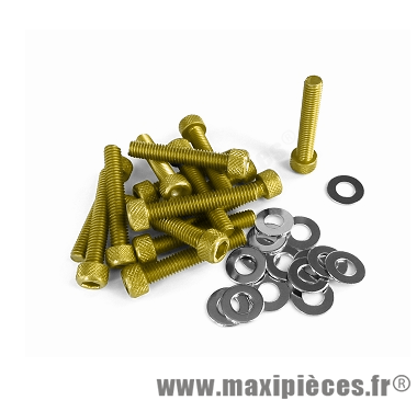 Déstockage ! Kit vis carter btr Or pour piaggio/gilera typhoon (x15)