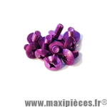 Lot de 10 vis Violet - tête bombé - cruciforme - 6x10mm *Déstockage !