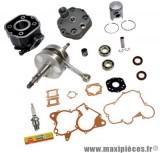 Pack kit moteur complet type origine(haut moteur, vilo, roulement, joint...)pour: euro2 derbi gpr 50 racing r nude senda drd sm x-treme...(moteur ebs050)