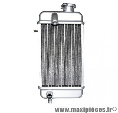 radiateur d'eau adaptable pour 50 à boîte rieju rmx, smx, rr, spike