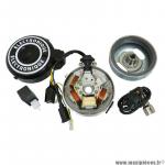 Allumage électronique complet 12 volts (gros cone) pour cyclomoteur Peugeot 103