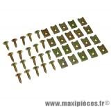 Kit de vis pour carrosserie + agrafe (kit de 20) M5x15
