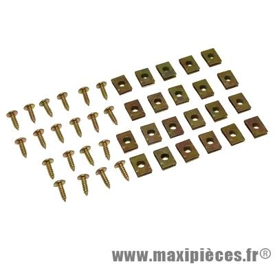 Kit de vis pour carrosserie + agrafe (kit de 20) M4x12
