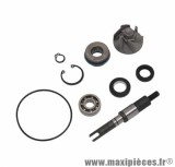 Kit réparation pompe à eau maxi-scooter pour honda 125 sh, 125 pantheon, 125 dylan (kit) - Type origine, Top Perf