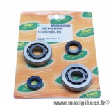 Roulement d'embiellage / vilo + joint scooter Top Perf pour peugeot 50 tkr, trekker, Speedfight, vivacity, buxy, squab, zenith, elyseo (kit sc04a47cs)