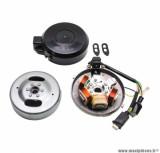 Allumage électronique 6 volts (gros cone sans bobine et sans bloc cdi) pour cyclomoteur peugeot 103