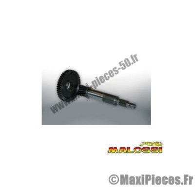 transmission engrenages primaires malossi (dents 14/45) pour maxi scooter : honda dylan pantheon ps s-wing sh ...