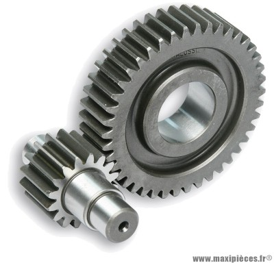 Transmission engrenages secondaires malossi (dents 16/42) pour maxi scooter : aprilia mojito gilera runner malaguti madison piaggio super hexagon vespa zip ...