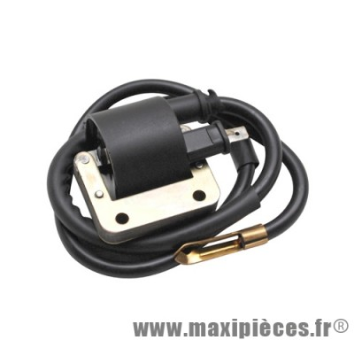 bobine d'allumage extérieur haute tension adaptable pour mbk 51 avec rupteur